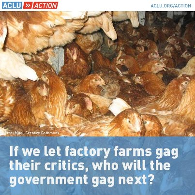 aclu-ag-gag