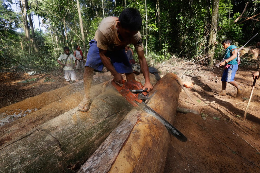 amazon-tribe-fights-loggers-environment-08