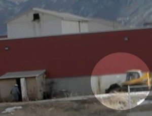 Video of a sick cow on bulldozer that lead to first ag-gag prosecution in Utah. Dale Smith Meatpacking Co.
