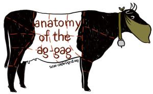 anatomy-of-ag-gag