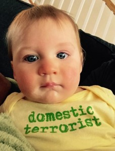 domestic-terrorist-onesie