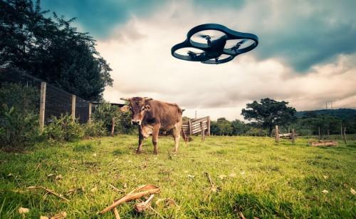 drone-farm-photo