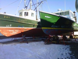 earth liberation front vandalism mass fishing boats