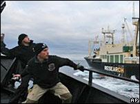 Sea Shepherd Stink Bombs