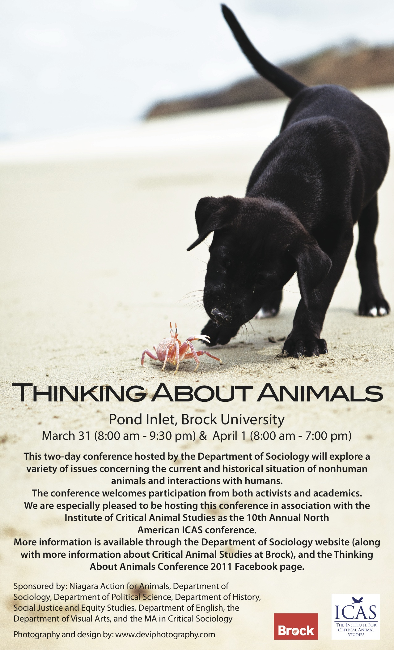 thinking about animals conference in canada and event at uconn law